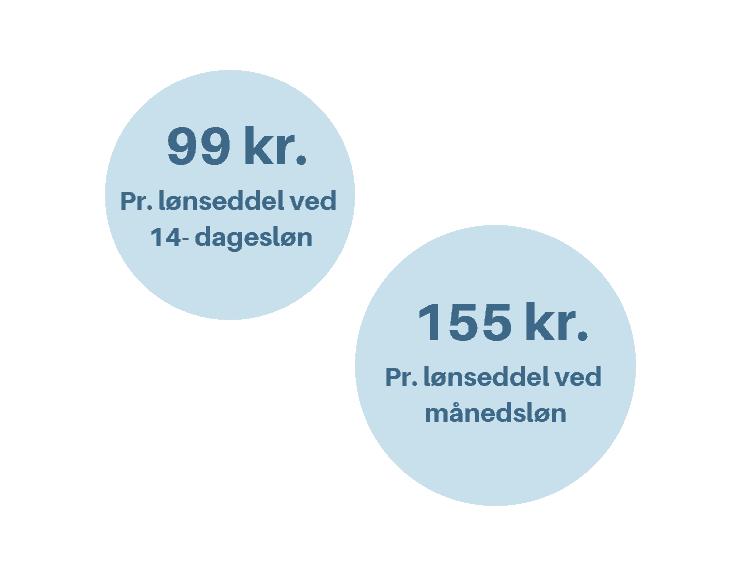 LønService hos Viborg Løn